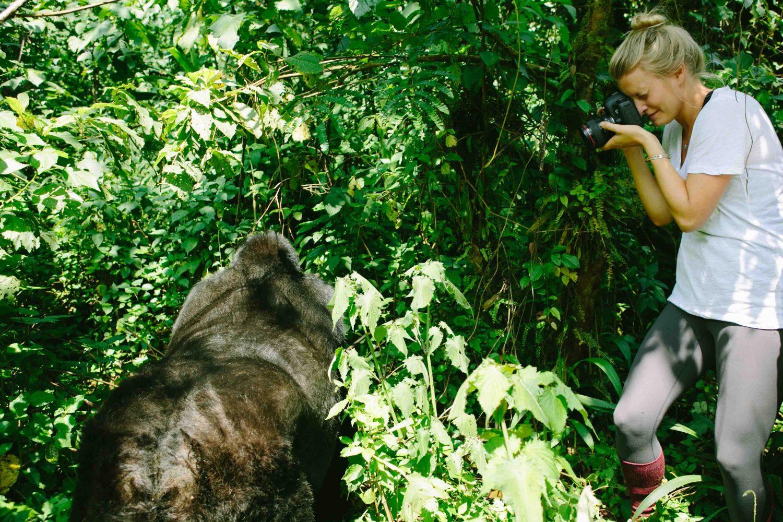 tourism nature Kubwa Travels Visit Vacation Gorilla