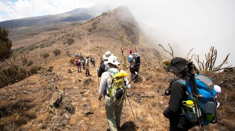 Kilimanjaro kubwa Trekking Destinations Trips Africa Safaris Big Five
