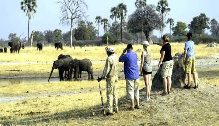 tourism Visit nature Travels Kubwa Vacation
