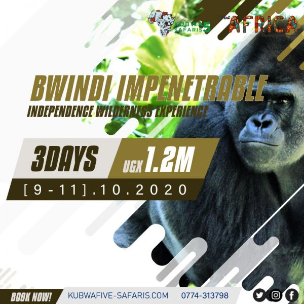 Bwindi Independence Wilderness Gorilla Experience