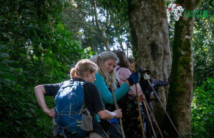 5 Days Wildlife Gorilla Trekking Trip
