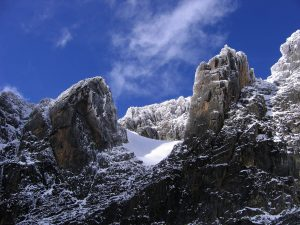 rwenzori mountains uganda africa